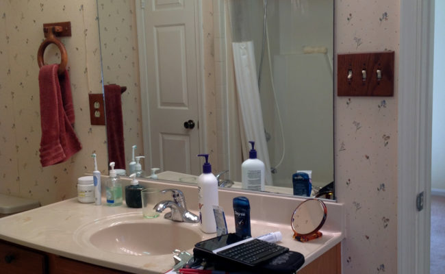 Briggum Bath Vanity – Before